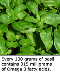 As a herb basil is a good Omega 3 source.