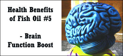 Fish oil health benefits: boost your brain functions in many different ways.