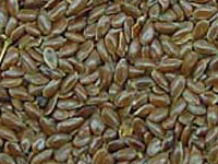 Brown flaxseeds / linsseds -richest in omega-3.